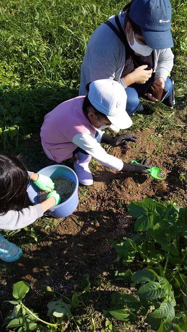子どもアグリ体験で、土に触れる子どもたちのワクワク感が伝わる!